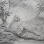 drawing, done by member of the sefton art class, beginners art course,