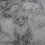 beginners art classes, near me, Southport, liverpool, Merseyside