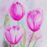 Beginners art class, atkinson art centre, southport, merseyide