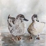 Art classes, Atkinson art gallery, southport, Merseyside,