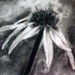 charcoal drawing, beginners art class, lydiate, liverpool, merseyside