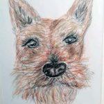 watercolour online, art class, liverpool, crosby, blundell sands, sefton, merseyside,