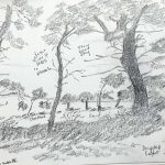 sketch, formby woods, by Lindsey