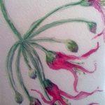 beginners watercolour class, sefton art group, atkinson art centre, southport, merseyside