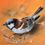 pastel drawing, painting, online art course, zoom class, liverpool, merseyside,