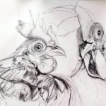 drawing, art class, atkinson art centre, southport, beginners art class, mersseyside, sefton,
